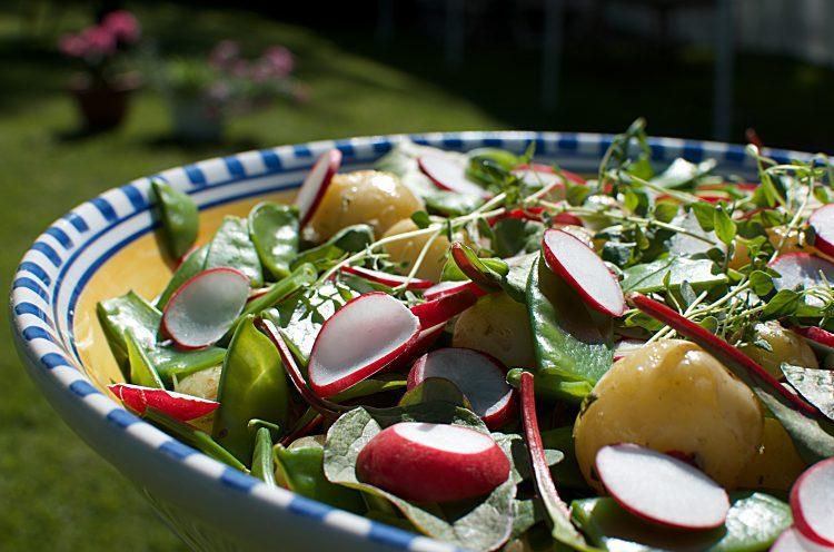 Kall marinerad färskpotatis-sallad